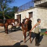 Gîte d'étape et de séjour La draille - Départ pour une séance d'équitation