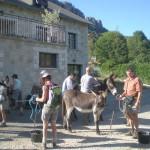 Randonneurs au départ avec des ânes
